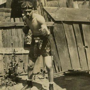 Boxer in backyard